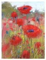 In the Poppy Field Fine Art Print