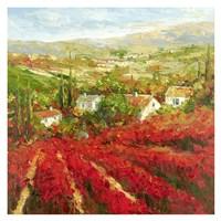 Bourgogne Fine Art Print