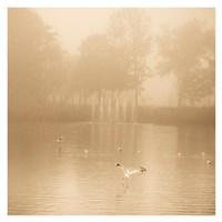 Golden Lake in Fog Fine Art Print
