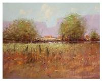 Cranes in September Fine Art Print