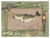 Large Mouth Bass Fine Art Print
