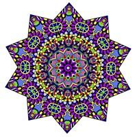 Shining Mandala in Purples Fine Art Print