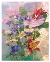 Seaborn 53 Fine Art Print