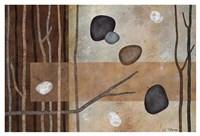 Sticks and Stones IV Fine Art Print