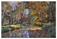 Autumn in the Afternoon Fine Art Print