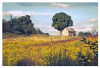 House on a Hill Fine Art Print