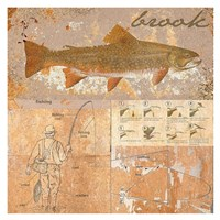 Brook Trout Fine Art Print