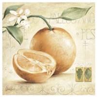 C. Ancilotti - Arancia Fine Art Print