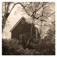 Bough and Barn Fine Art Print