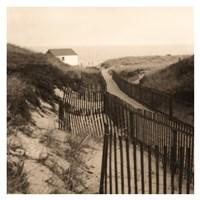 Dune Fence Fine Art Print