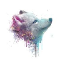 Fox Fine Art Print