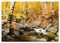 October Creek Fine Art Print
