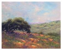 Poppy Hill Fine Art Print