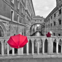 Red Umbrella 1 Fine Art Print