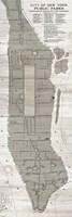New York Parks Map Vertical Fine Art Print