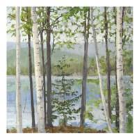 Cooper Lake I Fine Art Print