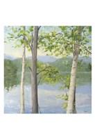 Cooper Lake II Fine Art Print