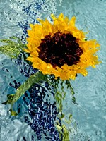 Submerged Sunflower 4 Fine Art Print