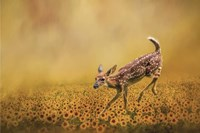 Romping In The Sunflower Field Fine Art Print