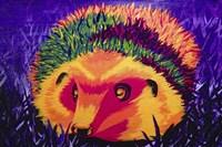 Colorful Hedgehog Fine Art Print