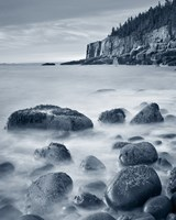 Acadia Coast Crop Fine Art Print