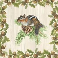 Woodland Critter II Fine Art Print