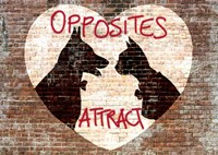 Opposites attract Fine Art Print