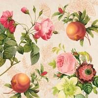 Roses and Pomegranates on Cream Fine Art Print