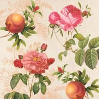 Pomegranates and Roses on Cream Fine Art Print