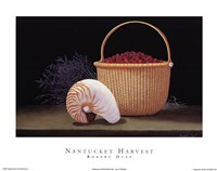Nantucket Harvest Fine Art Print