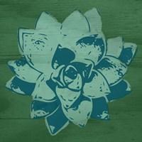 Boho Succulent Fine Art Print