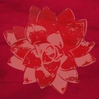 Boho Succulent Red Fine Art Print