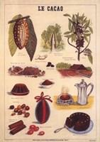 Le Cacao Fine Art Print