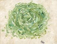 Succulent No. 2 Fine Art Print