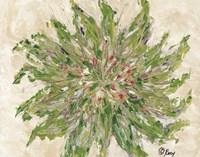 Succulent No. 3 Fine Art Print