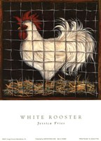 White Rooster Fine Art Print