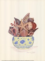 Seashell Collection III Fine Art Print