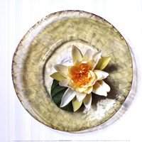 Lotus Flower Fine Art Print