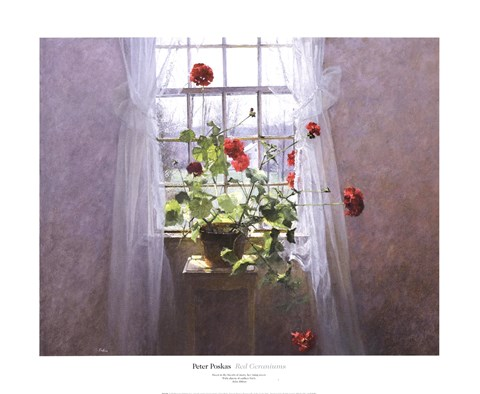 Framed Red Geraniums Print