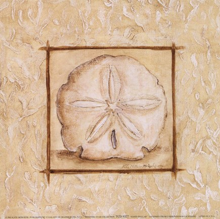 Framed Sand Dollar Print