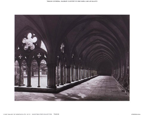 Framed Eng. Cathedral Salisbury Cloisters Print
