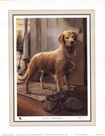 Loyal Companion  Fine Art Print