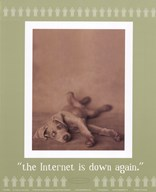 Internet Is Down Again