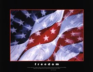 American Pride-Together They Gave  Fine Art Print