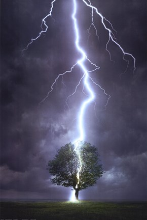 Lightning Striking A Tree Fine Art Print By Unknown At