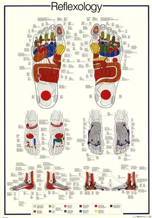 Framed Reflexology Print