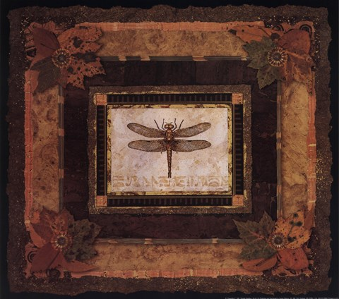 Framed Dragonfly II Print