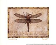 Dragonfly III Art