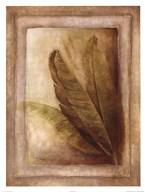 Palm Leaf Impression II  Fine Art Print