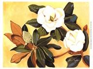 Southern Magnolia I Art